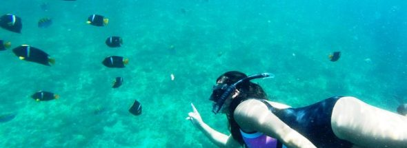 Snorkeling & Diving Tours